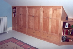 Custom built-in storage and shelving unit